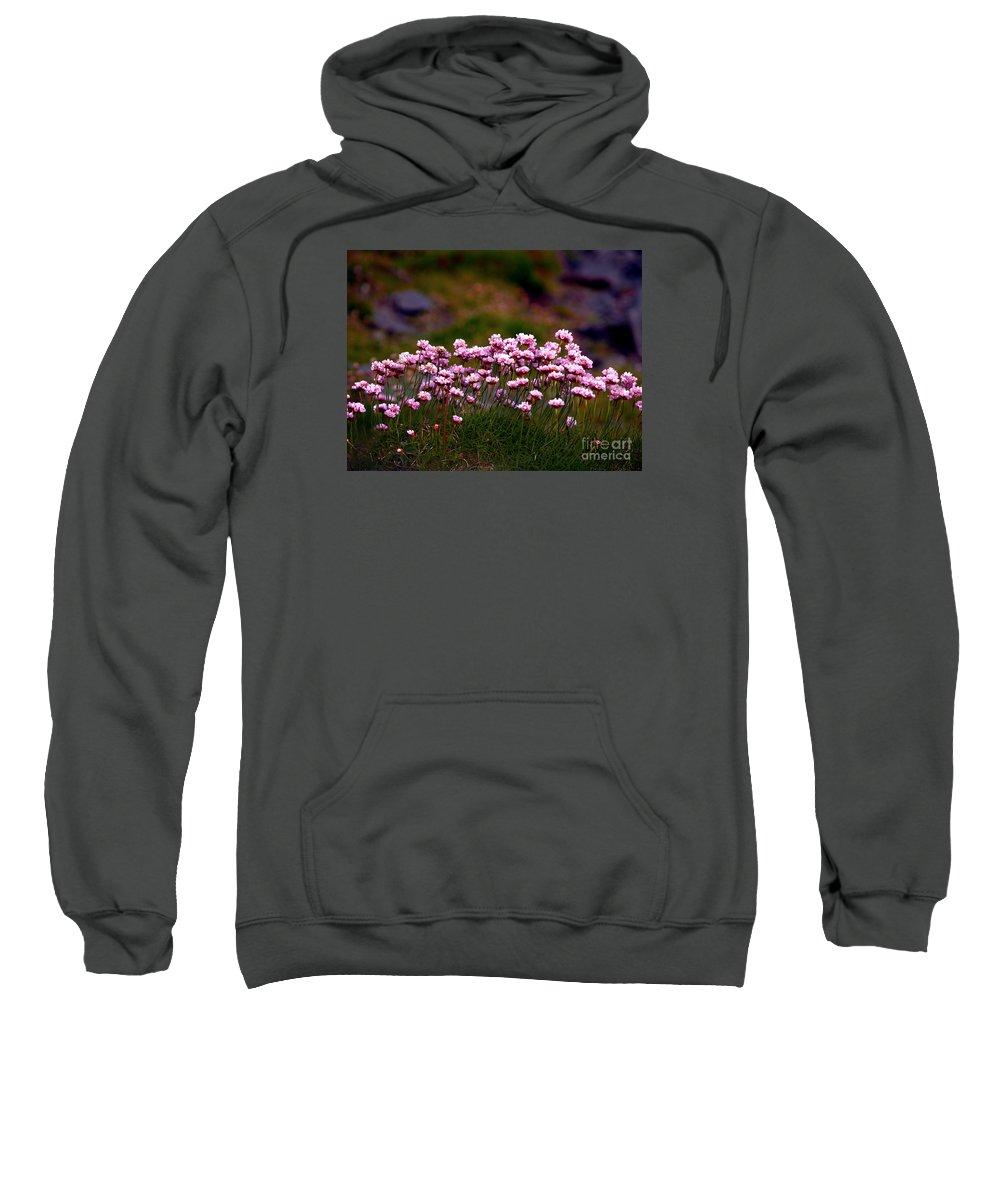 Fine Art Photography Sweatshirt featuring the photograph Irish Sea Pinks by Patricia Griffin Brett