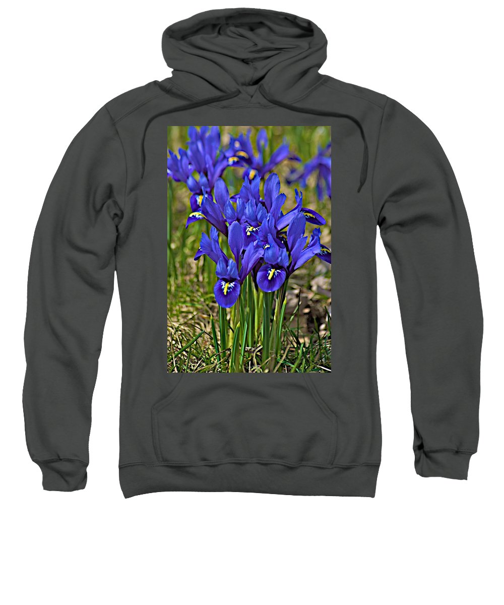 April Sweatshirt featuring the photograph Ithaca Spring by Joseph Yarbrough