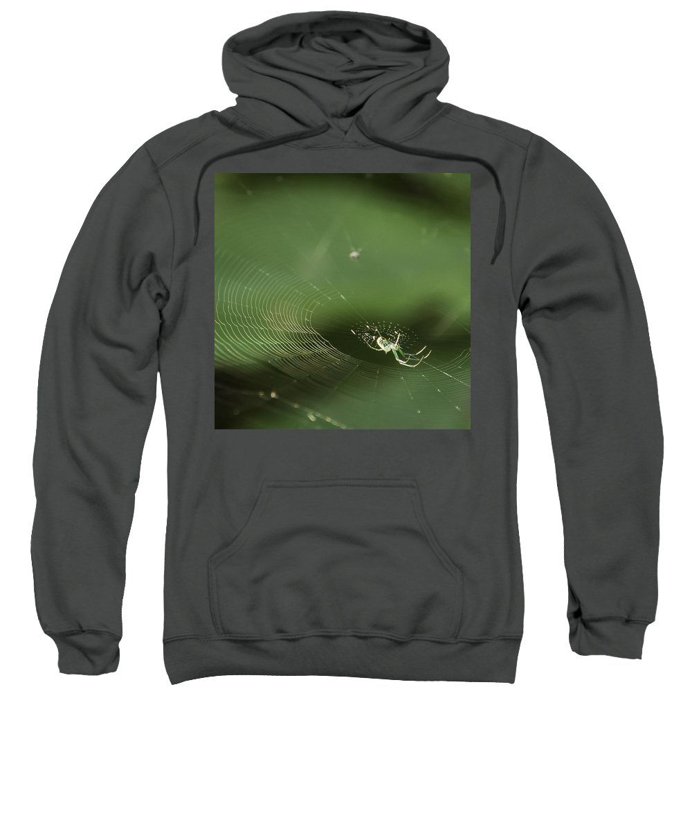 Central Park Sweatshirt featuring the photograph I've Been Wainting For So Long by Theodore Jones