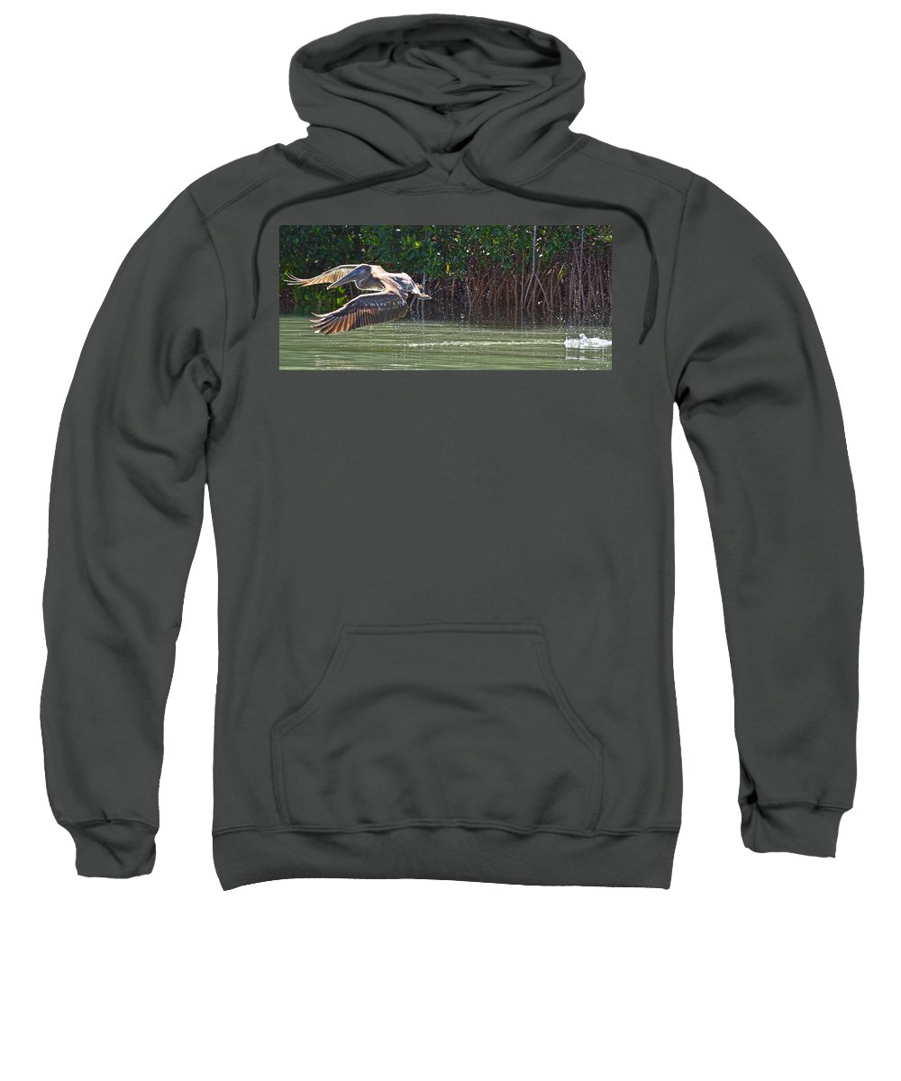 Brown Sweatshirt featuring the photograph Journey by Betsy Knapp