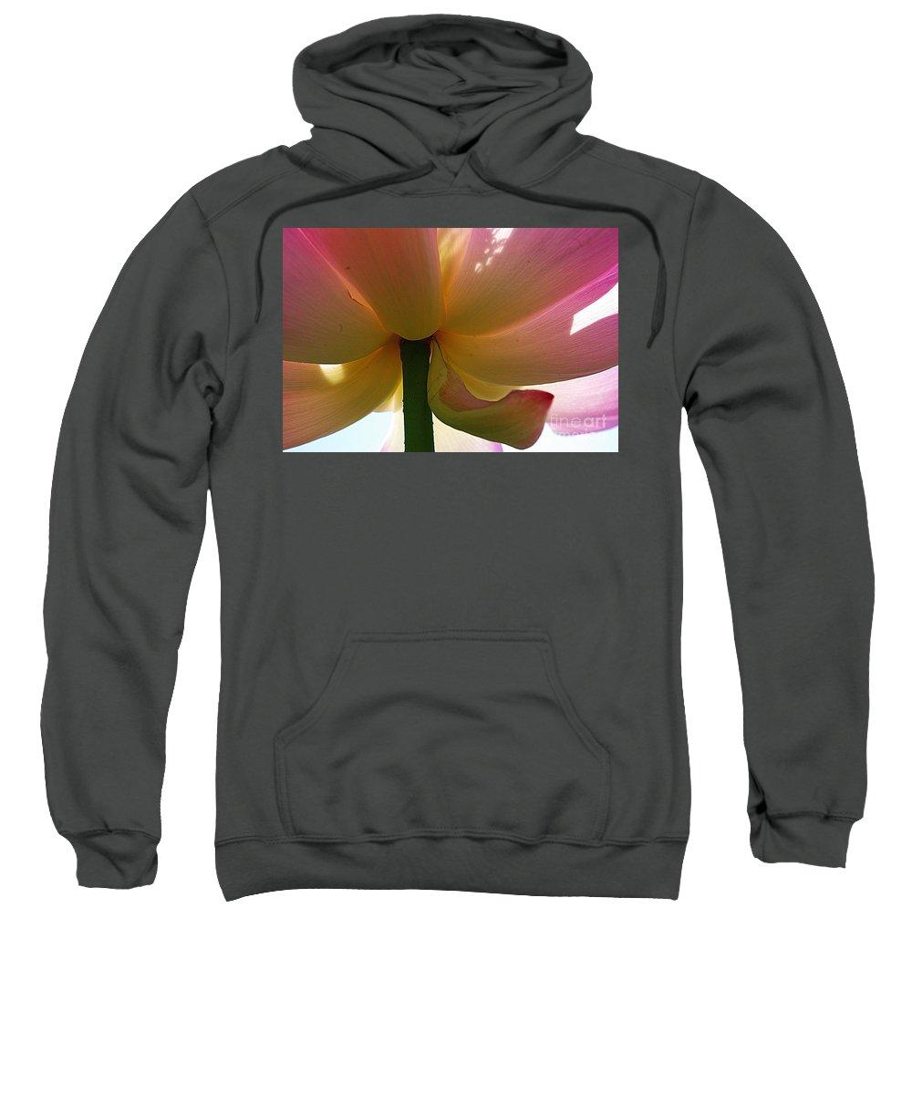 Flower Sweatshirt featuring the photograph Kenilworth Garden Four by John S