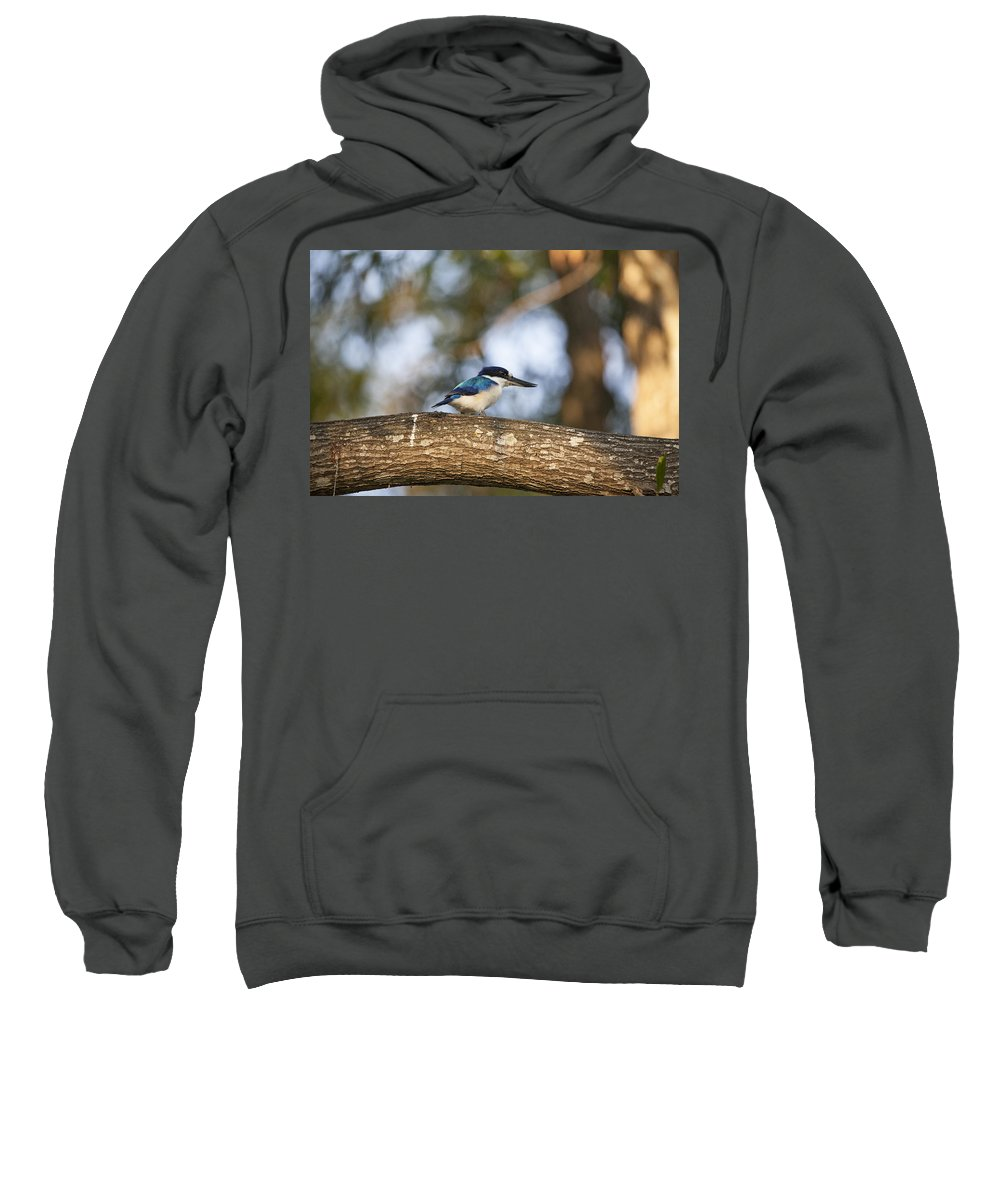 Kingfisher Sweatshirt featuring the photograph Kingfisher-top-end Australia by Douglas Barnard