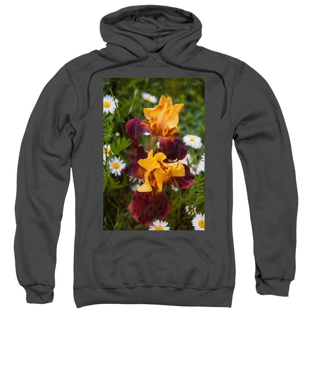 North Cascades Sweatshirt featuring the painting Kissing Sunshine by Omaste Witkowski
