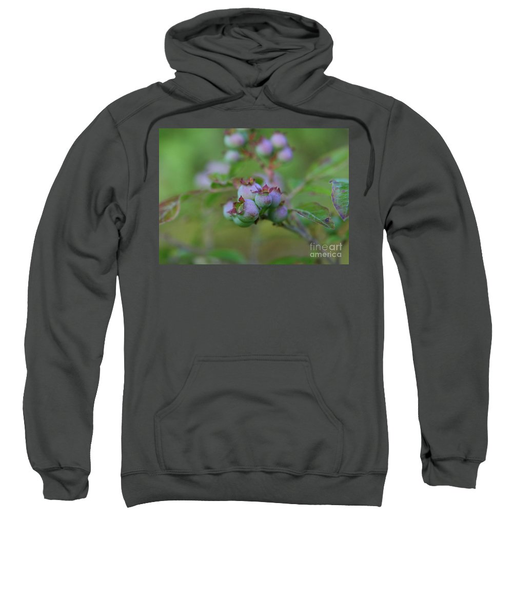 Flower Photography Sweatshirt featuring the photograph Lake Side by Neal Eslinger