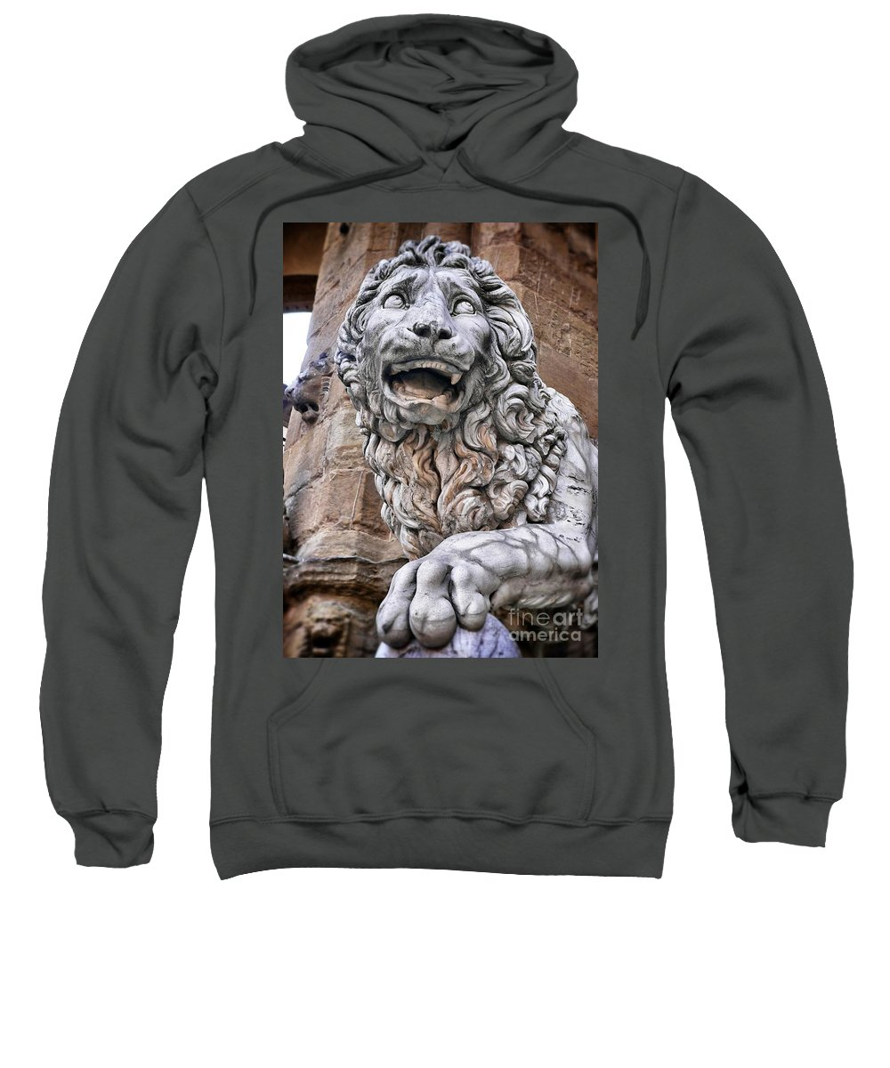 Ancient Sweatshirt featuring the photograph Lanzi by Angela Wright
