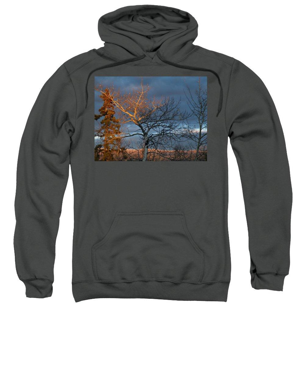 Last Sweatshirt featuring the photograph Last Light Last Leaves by Brian Boyle