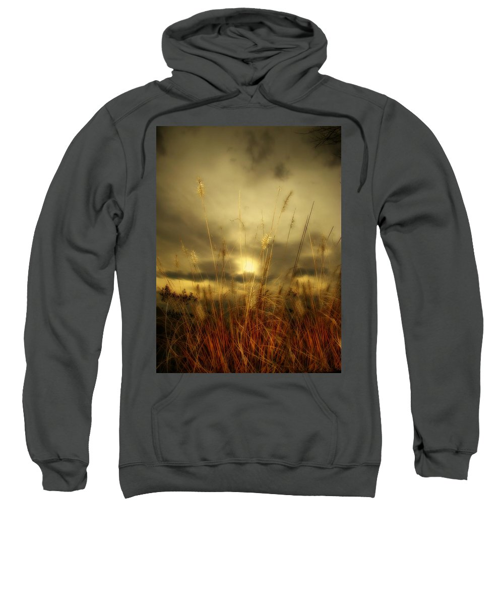 Sunset Sweatshirt featuring the photograph Late Summer Sun Through The High Grass by Gothicrow Images
