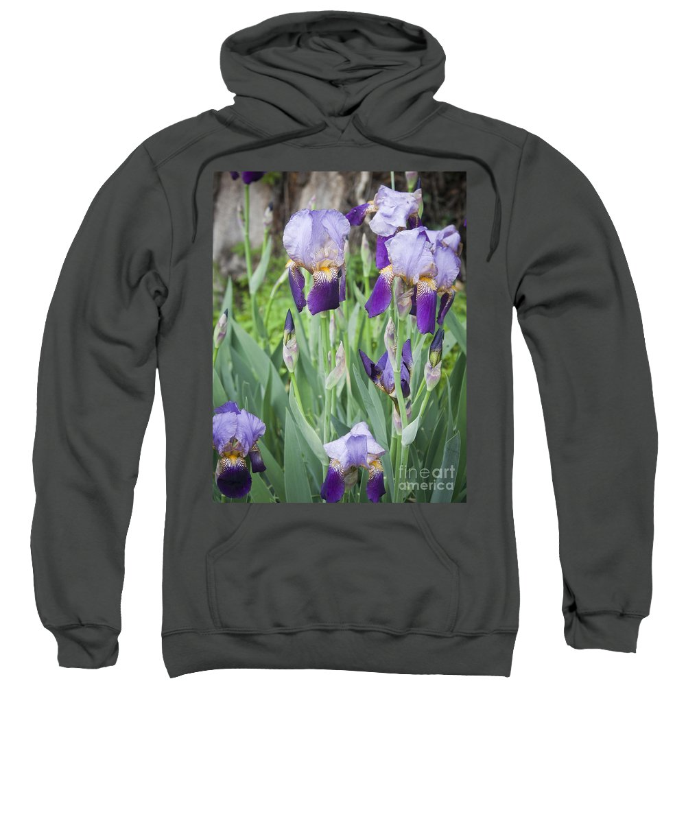 Iris Sweatshirt featuring the photograph Lavender Iris Group by Teresa Mucha