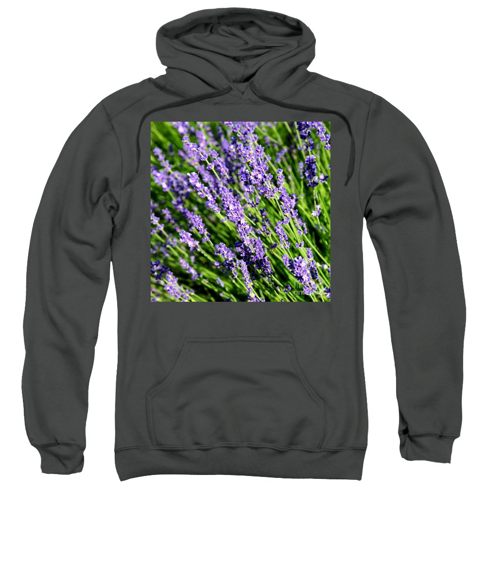 Lavender Sweatshirt featuring the photograph Lavender Square by Carol Groenen