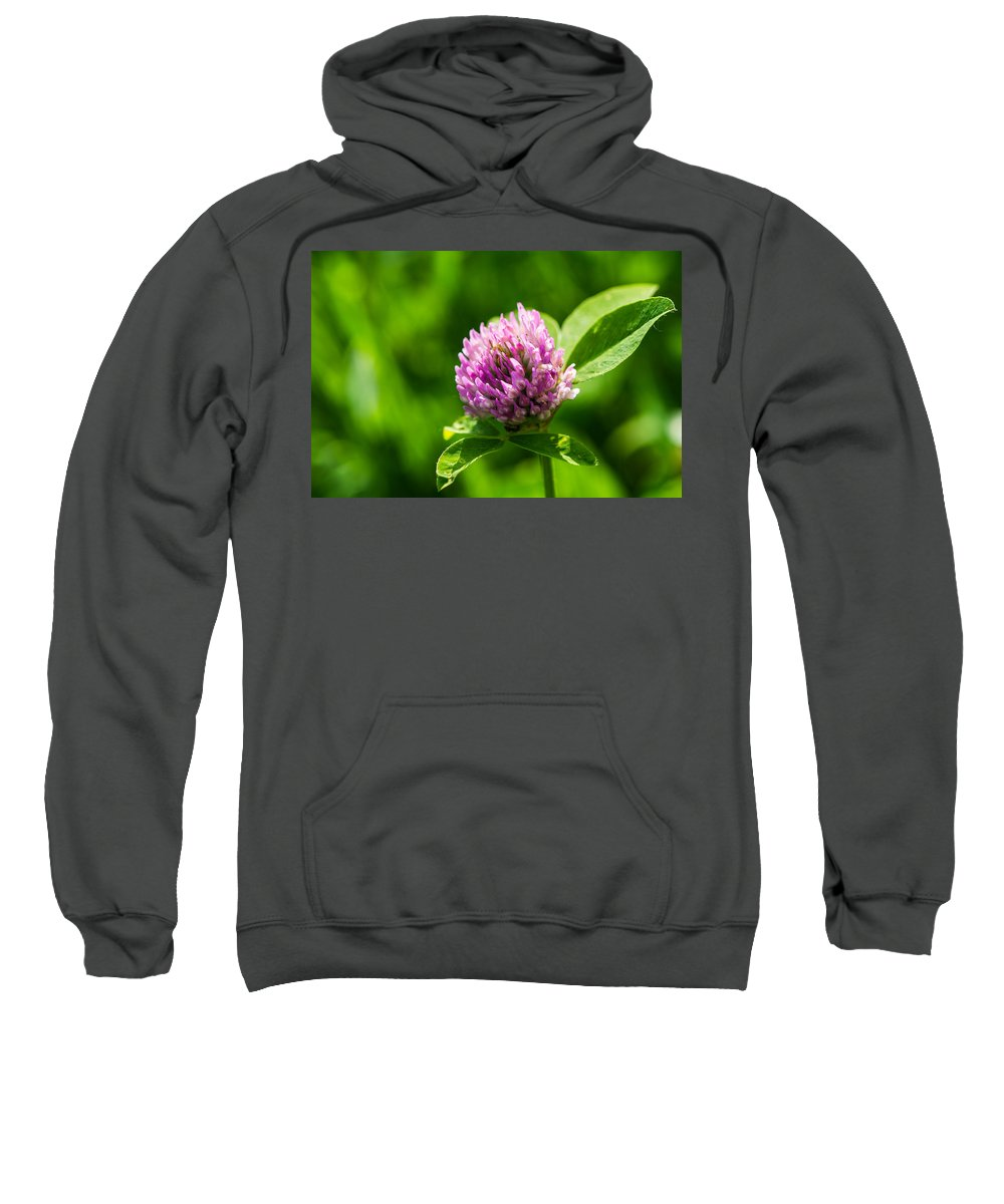 Beautiful Sweatshirt featuring the photograph Let Us Live In Clover - Featured 3 by Alexander Senin