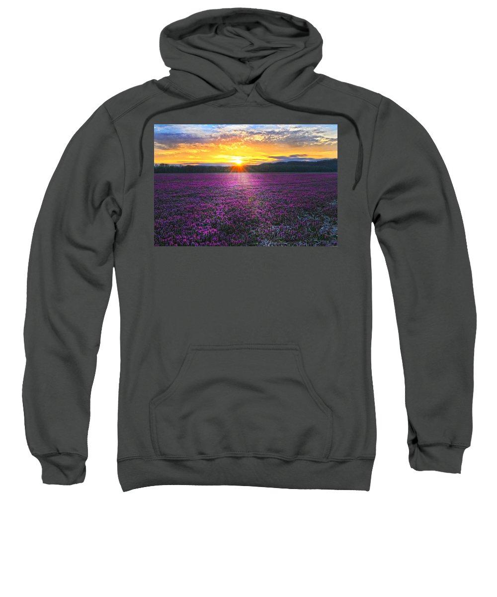 Purple Flowers Sweatshirt featuring the photograph Light Just Right by Randall Branham