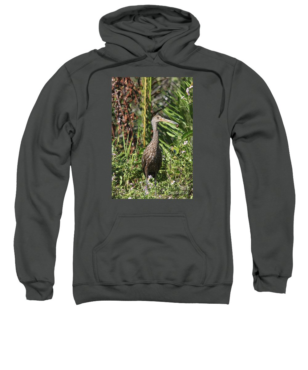 Limpkin Sweatshirt featuring the photograph Limpkin With An Apple Snail by Christiane Schulze Art And Photography