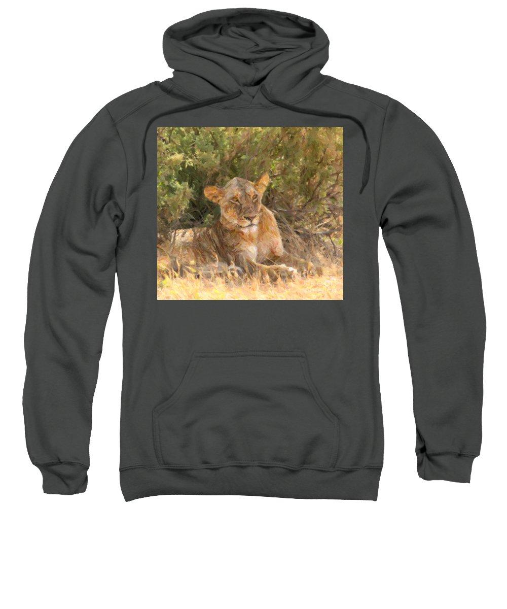 Lioness Sweatshirt featuring the digital art Lioness Panthera Leo Resting by Liz Leyden