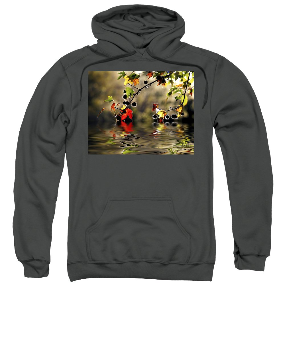 Liquidambar Maple Autumn Fall Flood Water Reflection Sweatshirt featuring the photograph Liquidambar In Flood by Sheila Smart Fine Art Photography