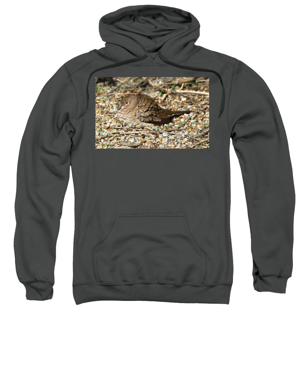 :little Dove Sweatshirt featuring the photograph Little Dove by Tom Janca