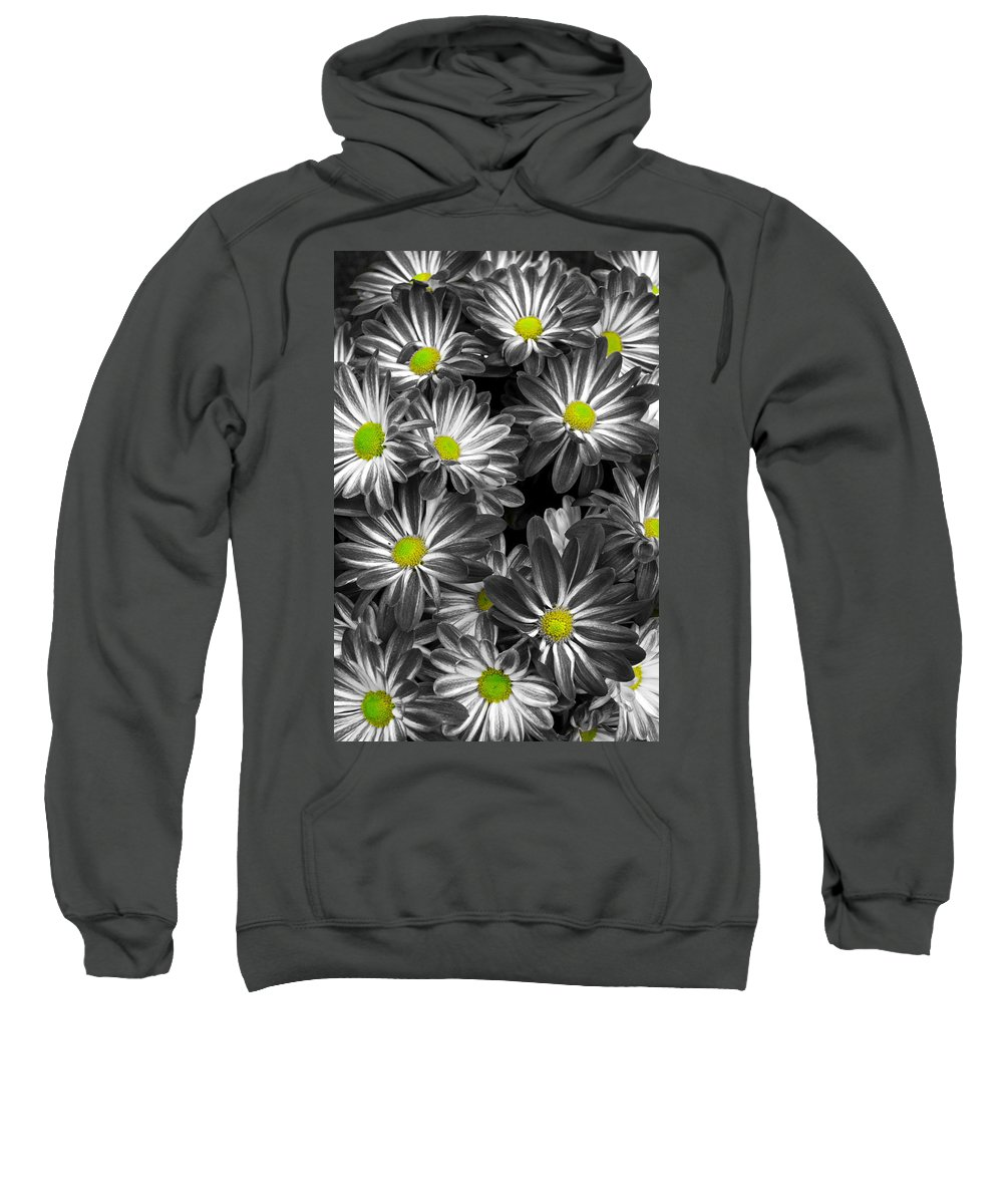 Flowers Sweatshirt featuring the photograph Little Rays Of Sunshine by Frozen in Time Fine Art Photography
