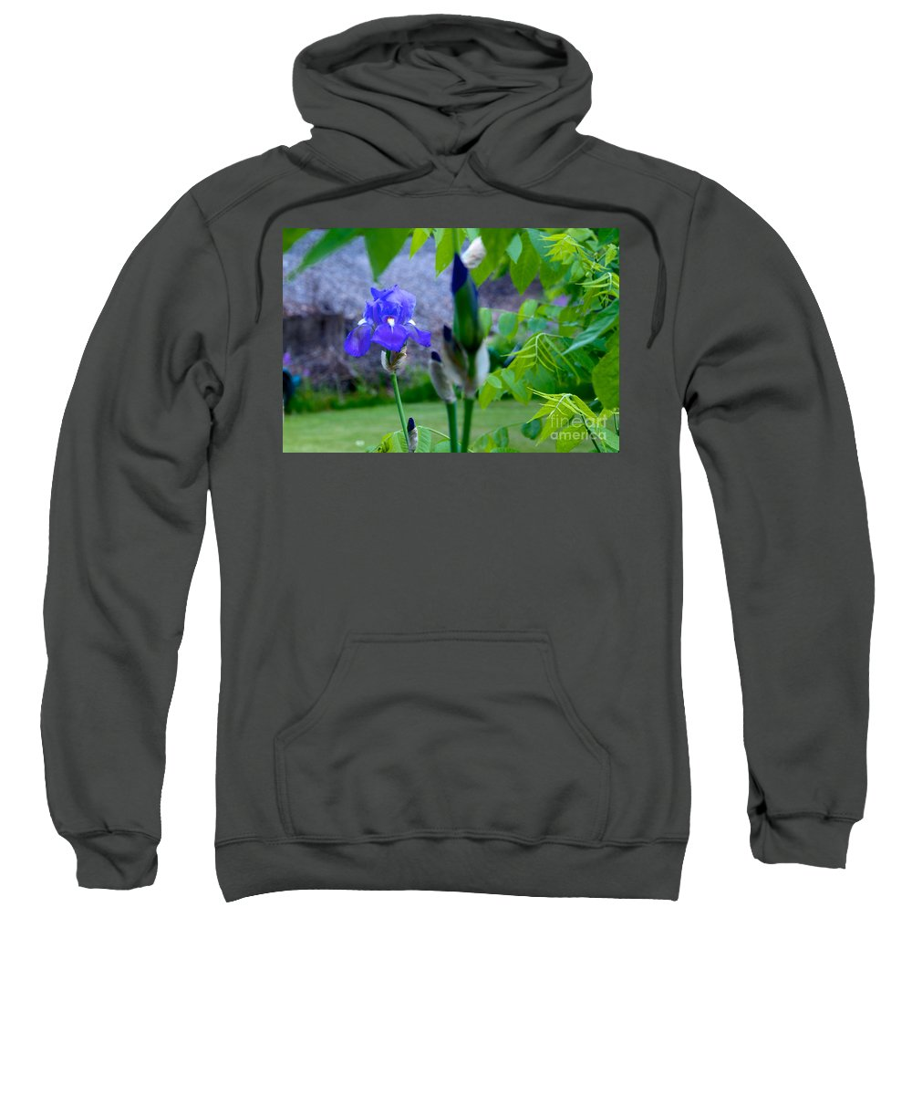 Flower Sweatshirt featuring the photograph Lone Iris by William Norton