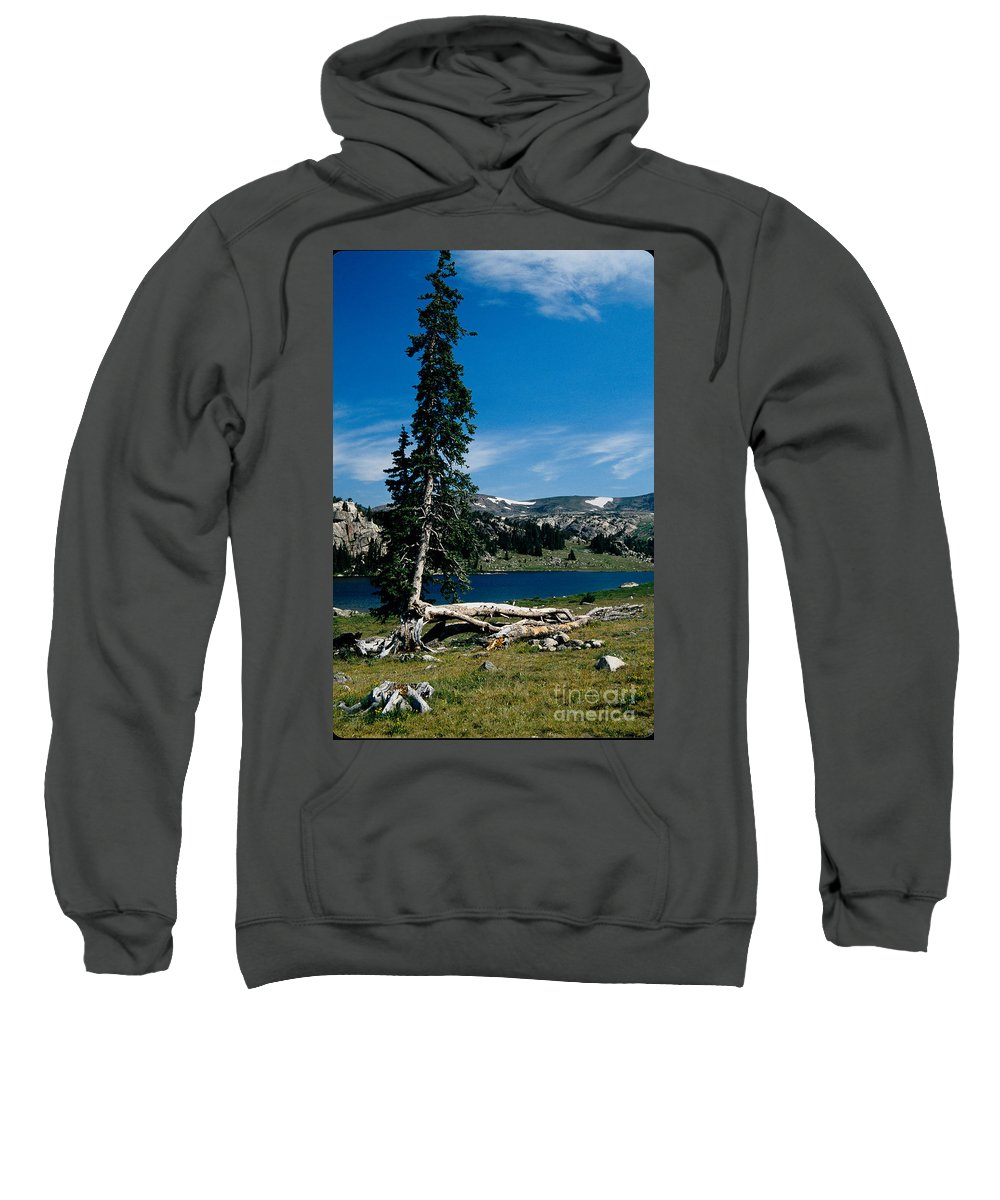 Mountains Sweatshirt featuring the photograph Lone Tree at Pass by Kathy McClure