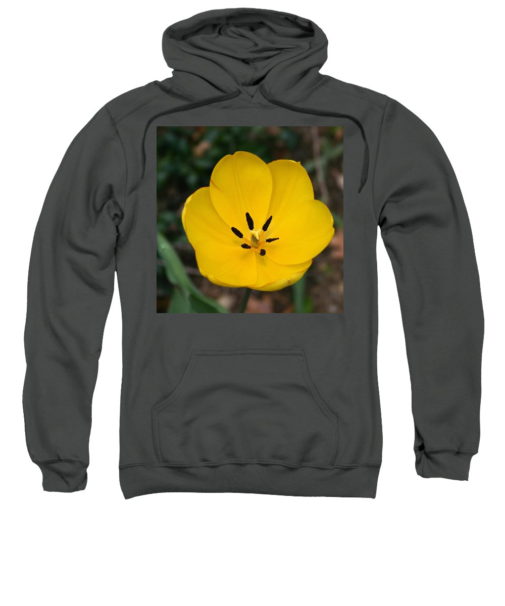 Denyse Duhaime Photography Sweatshirt featuring the photograph Lone Yellow Tulip by Denyse Duhaime