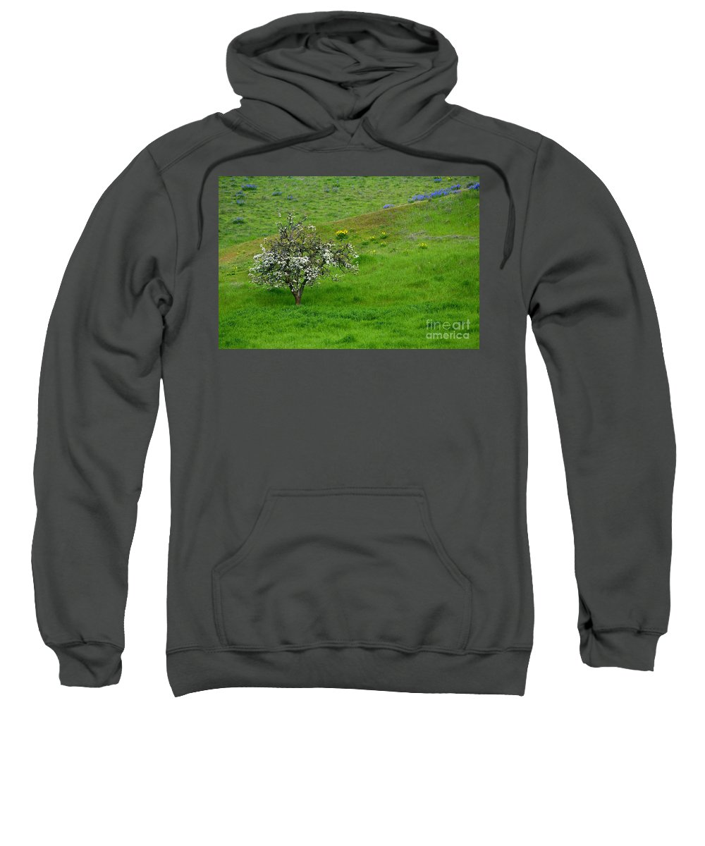 Meadow Sweatshirt featuring the photograph Long Forgotten by Mike Dawson