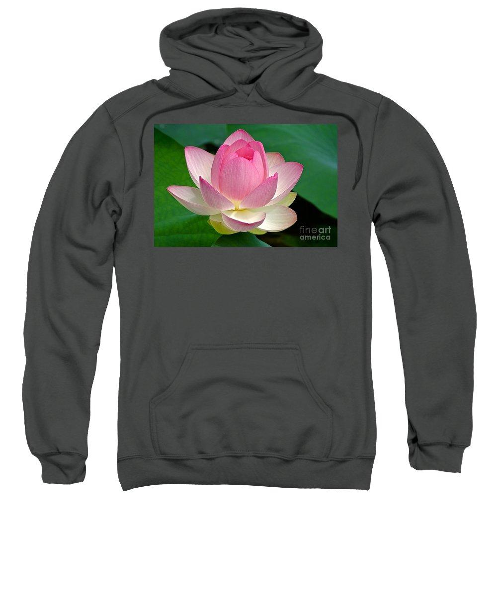 Lotus Sweatshirt featuring the photograph Lotus 7152010 by Byron Varvarigos