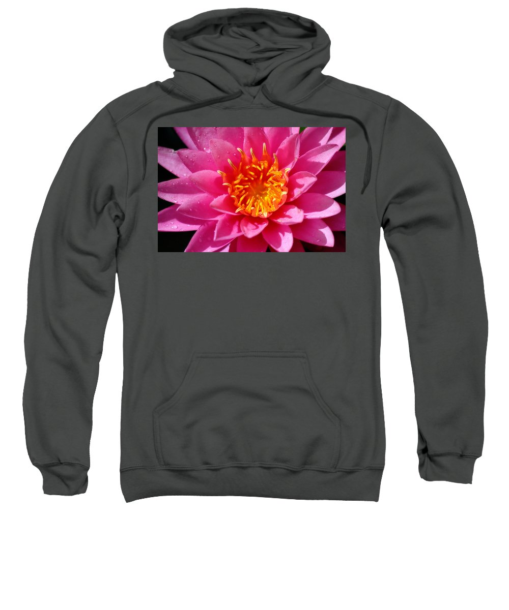 Corey Haynes Sweatshirt featuring the photograph Lotus by CE Haynes