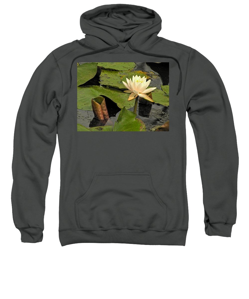 Lotus Sweatshirt featuring the photograph Lotus Flower In White by Jennifer Wheatley Wolf