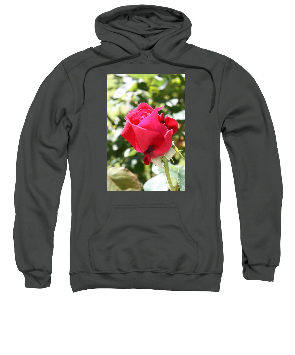 Rose Sweatshirt featuring the photograph Love In Red by Christiane Schulze Art And Photography