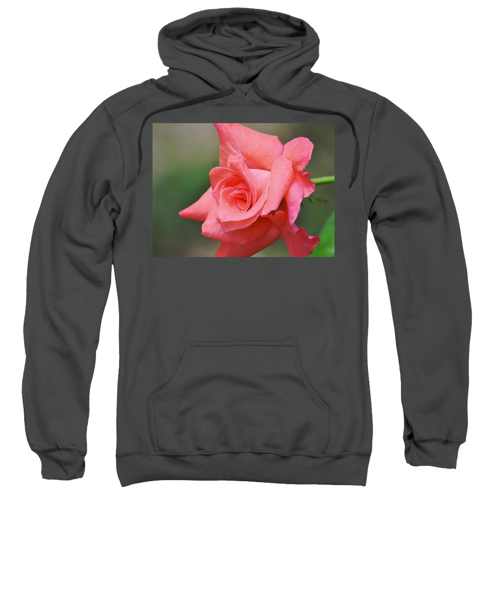 Love Me Tenderly Sweatshirt featuring the photograph Love Me Tenderly by Maria Urso