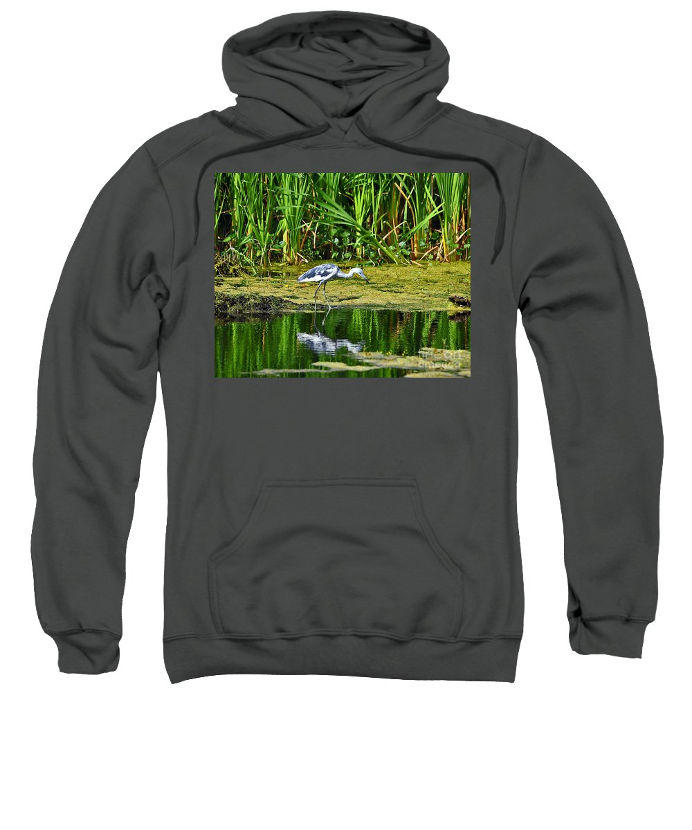 Heron Sweatshirt featuring the photograph Lovely Little Blue by Al Powell Photography USA