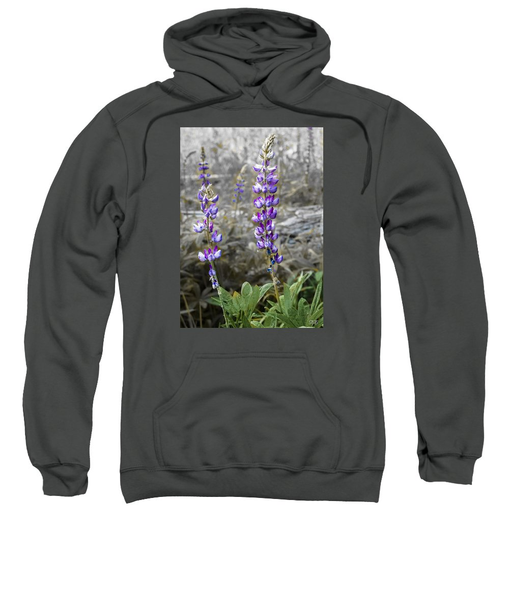Lupine Sweatshirt featuring the photograph Lovely Lupines by Susan Eileen Evans