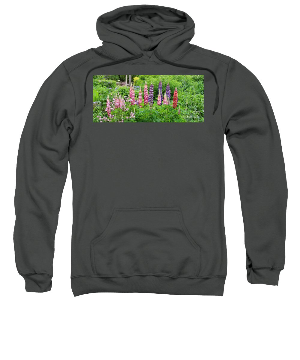 Lupines Sweatshirt featuring the photograph Lupines 5976 by Jack Schultz