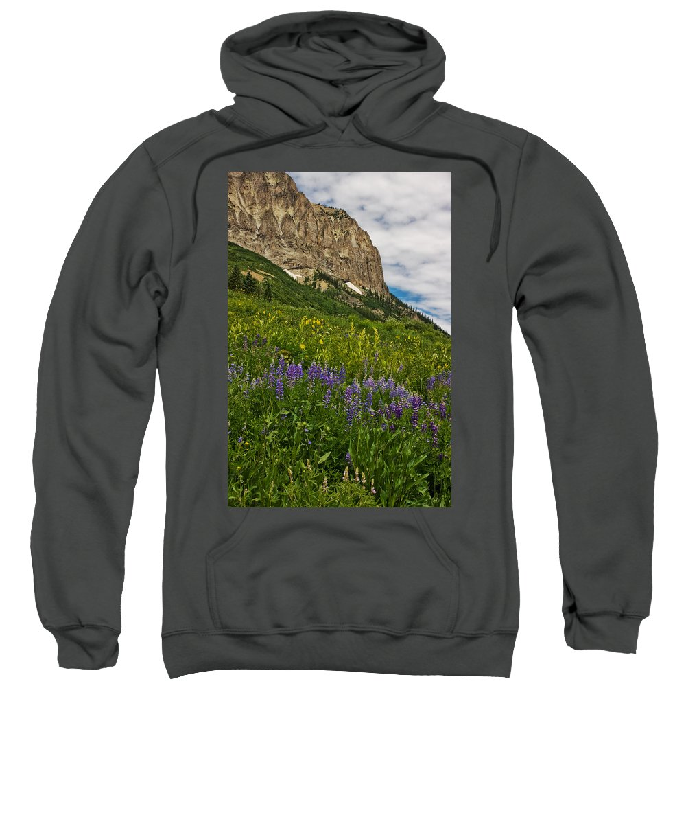 Crested Butte Sweatshirt featuring the photograph Lupines On The Hillside by Ronda Kimbrow