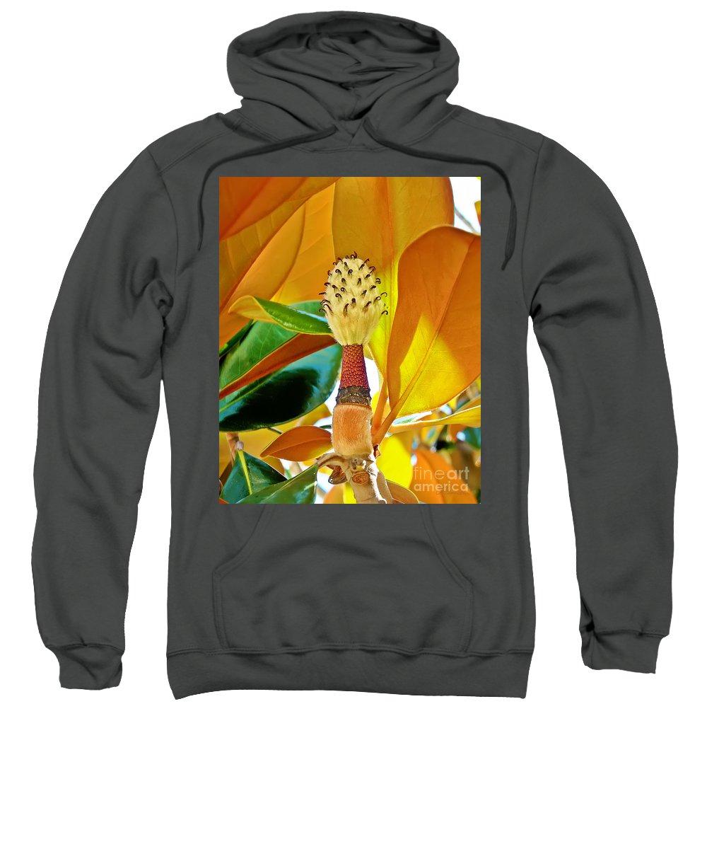 Magnolia Sweatshirt featuring the photograph Magnolia Flower by Olga Hamilton