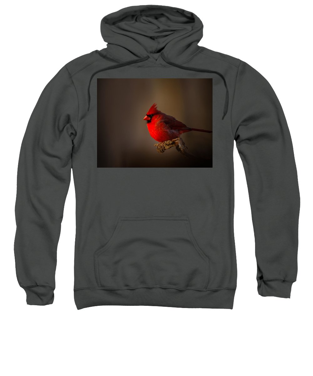 Male Cardinal Sweatshirt featuring the photograph Male Cardinal Subdued Forest Background by Randall Branham