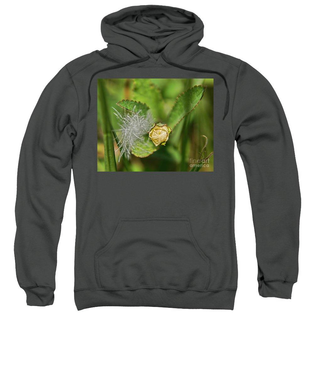 Yellow Sweatshirt featuring the photograph Memories by Olga Hamilton