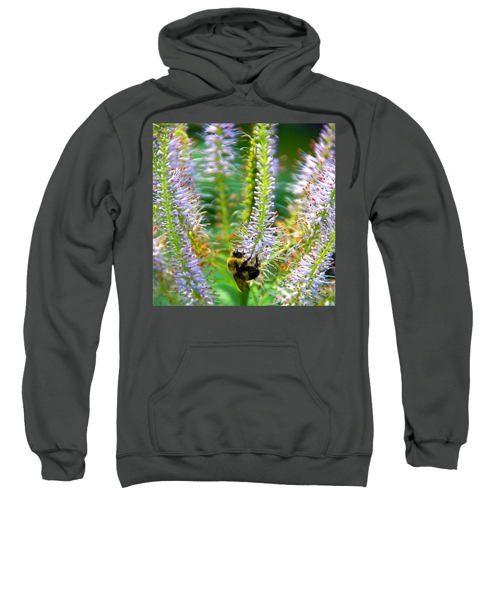 Flower And Bumble Bee Sweatshirt featuring the photograph Merry Go Round by Byron Varvarigos