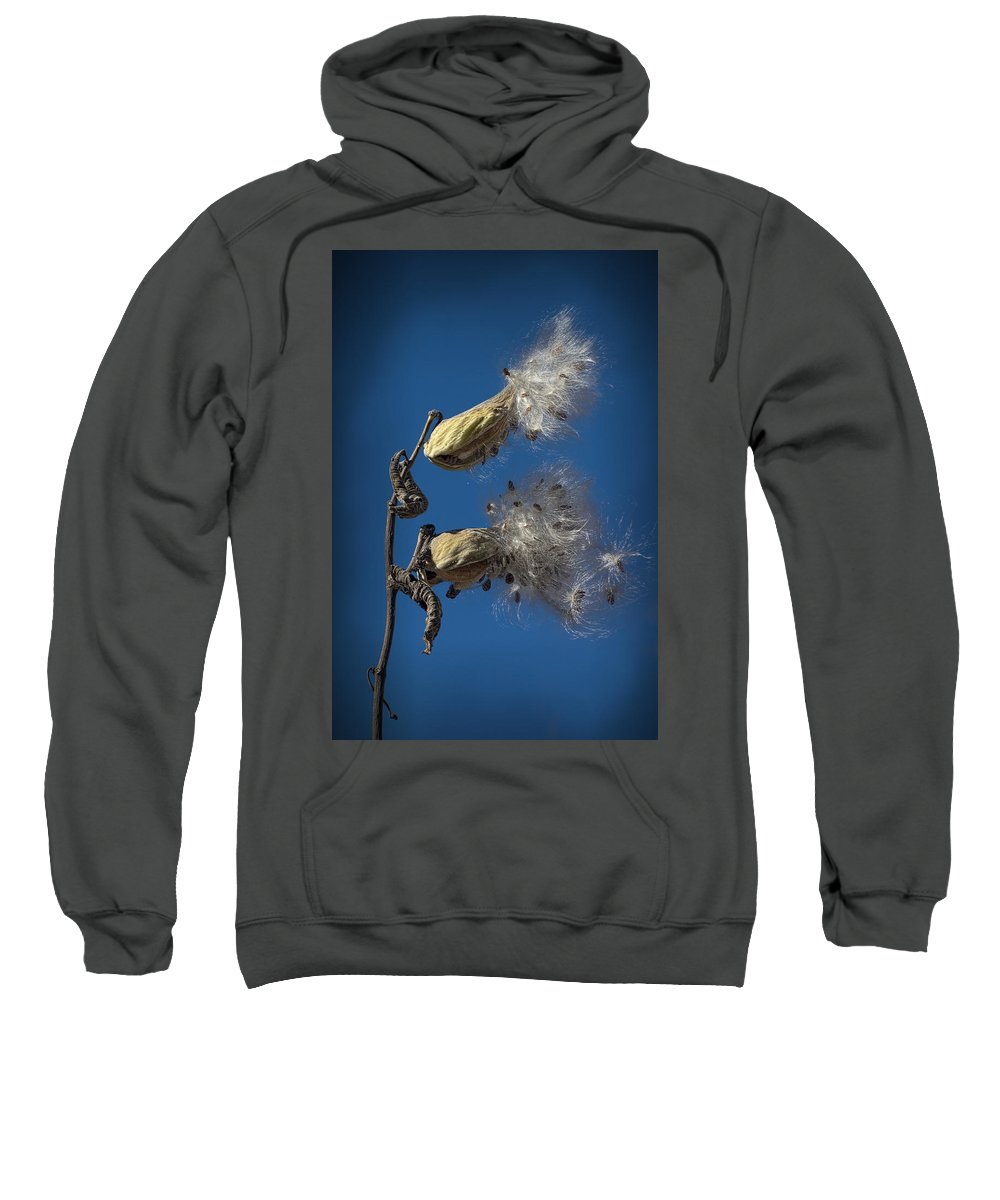 Art Sweatshirt featuring the photograph Milkweed Pods On A Blue Background by Randall Nyhof