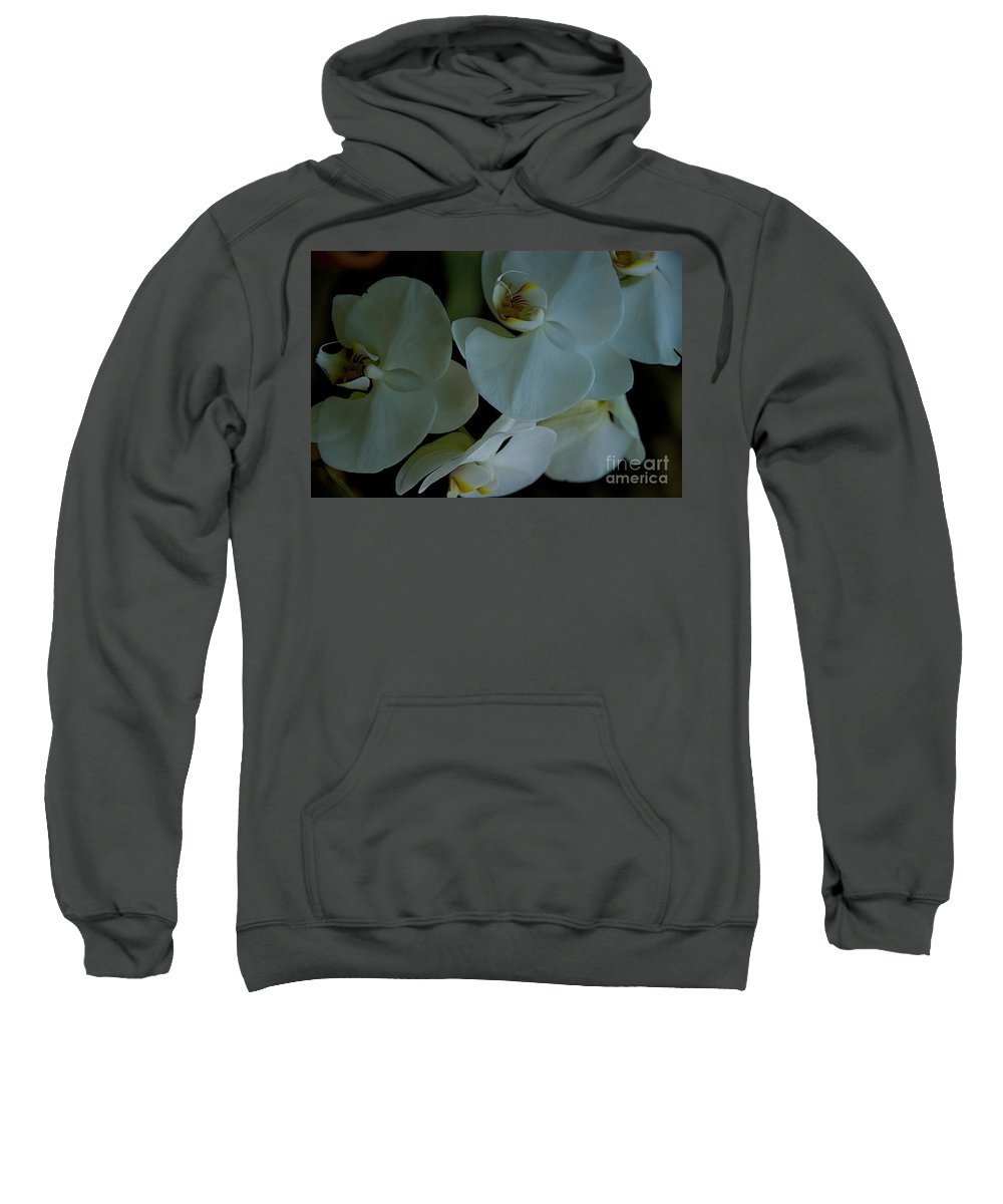 Flowers Sweatshirt featuring the photograph Minor Light by Joseph Yarbrough