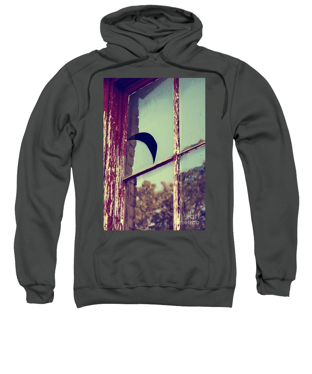 Sweatshirt featuring the photograph Mister Moon by Trish Mistric