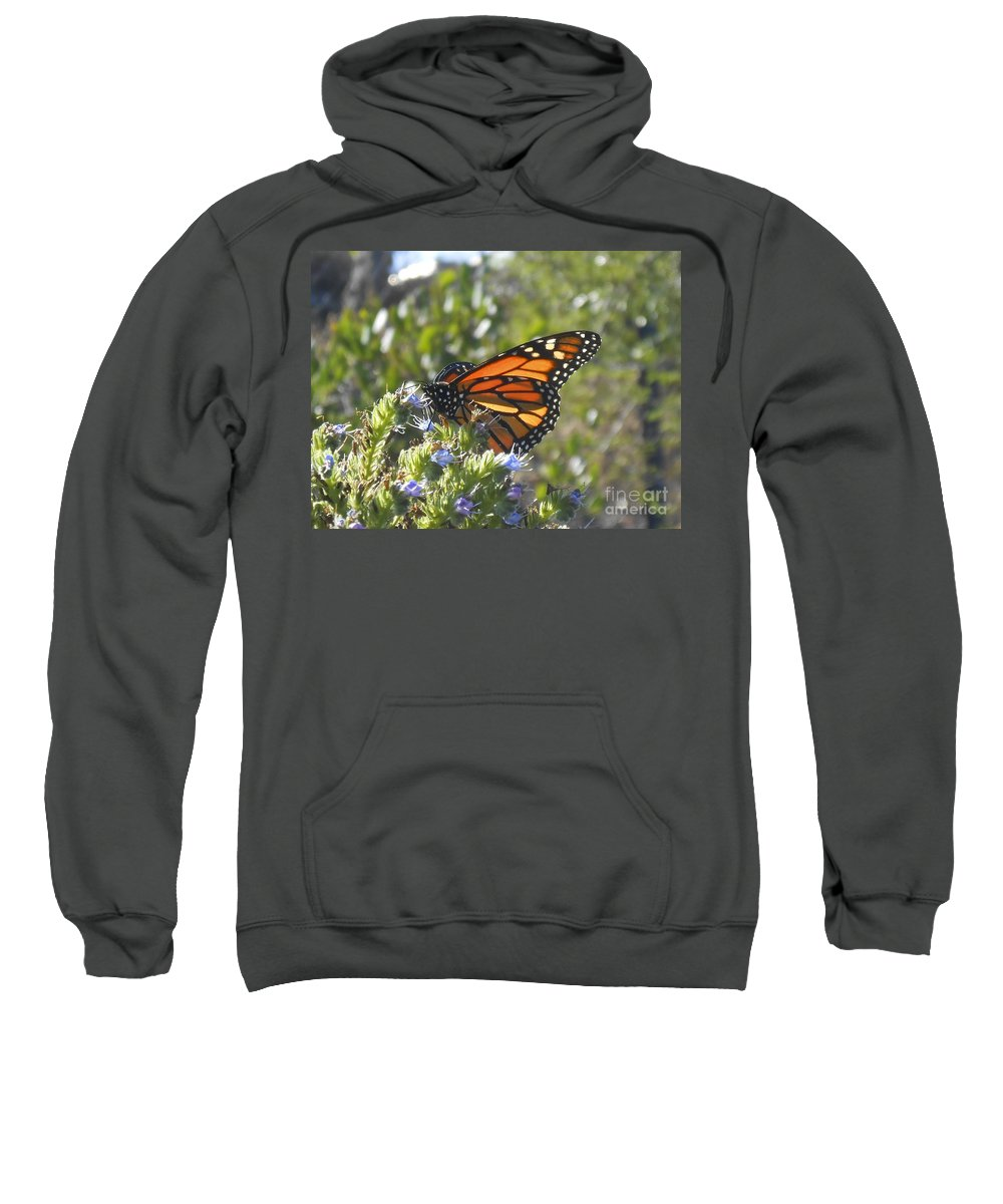 Monarch Sweatshirt featuring the photograph Monarch by Bridgette Gomes