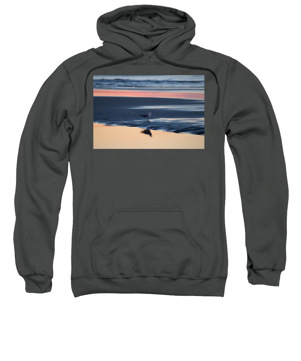 Morning Gull Sweatshirt featuring the photograph Morning Gull by Bill Cannon