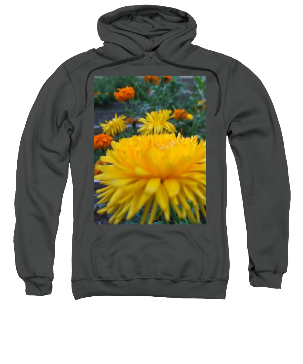 Floral Sweatshirt featuring the photograph Morning by Jo Dawkins