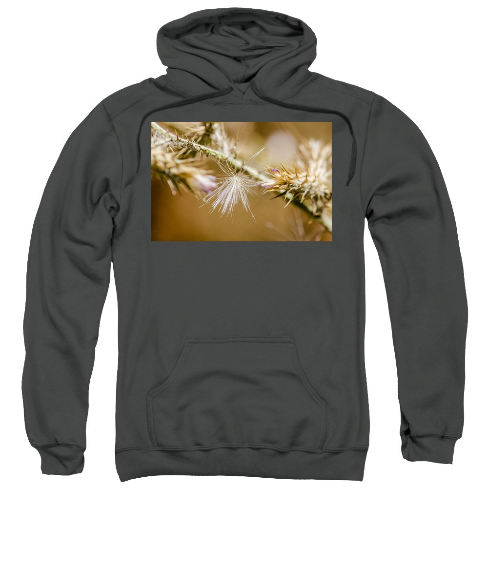 Bloom Photographs Sweatshirt featuring the photograph Morning Lights by Sotiris Filippou