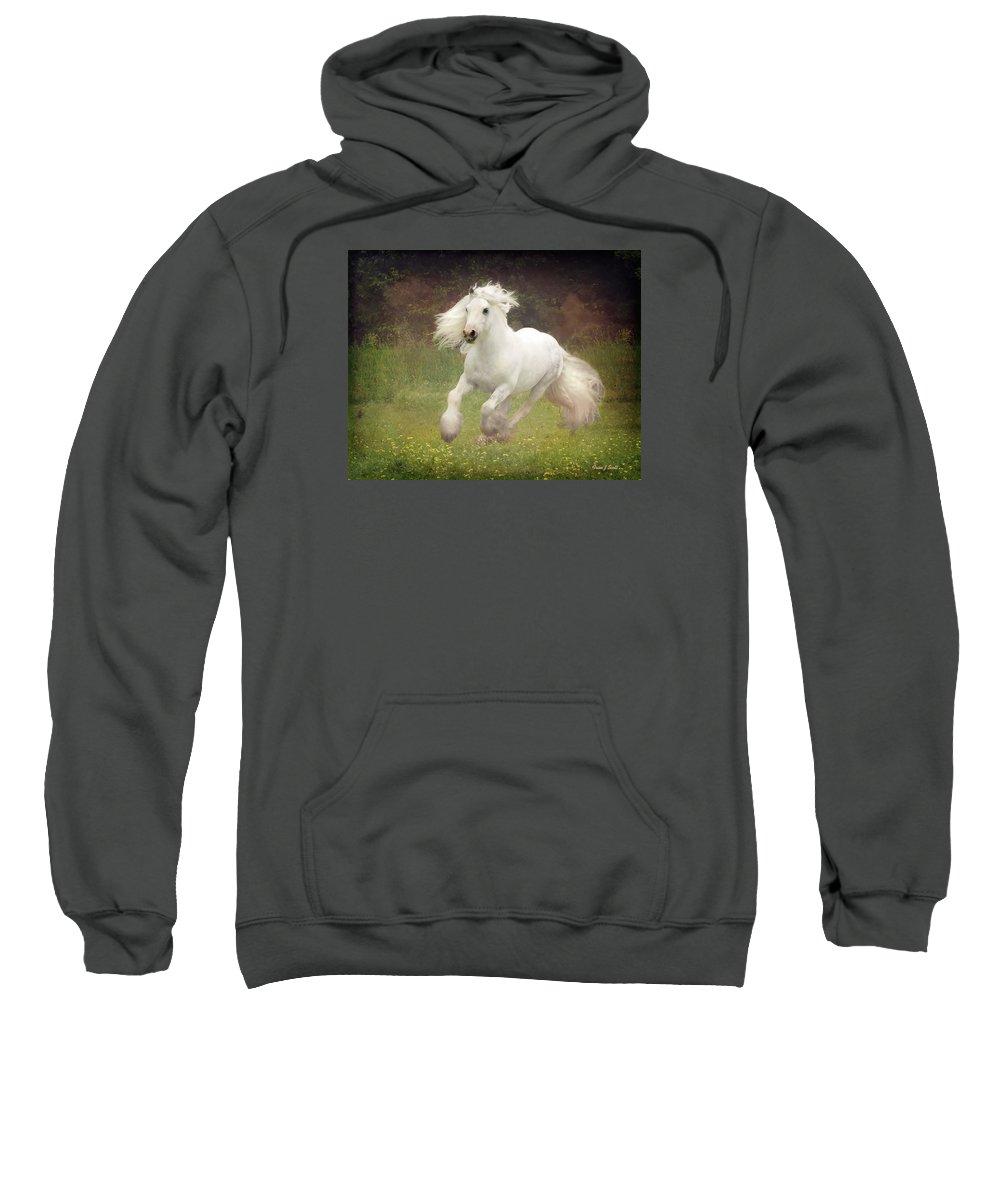 Horses Sweatshirt featuring the photograph Morning Mist C by Fran J Scott