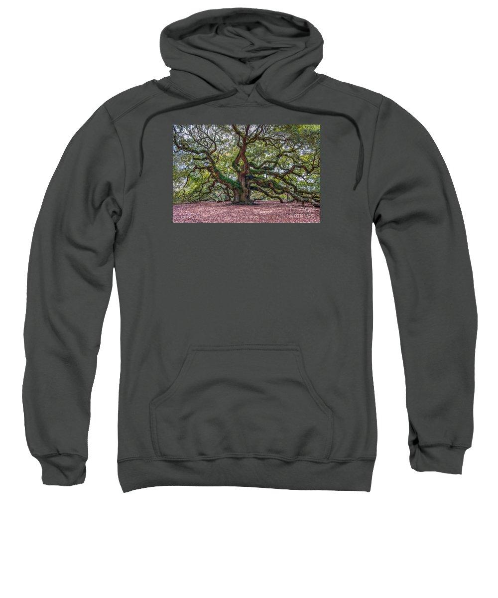 Angel Oak Tree Sweatshirt featuring the photograph Moss Draped Limbs by Dale Powell