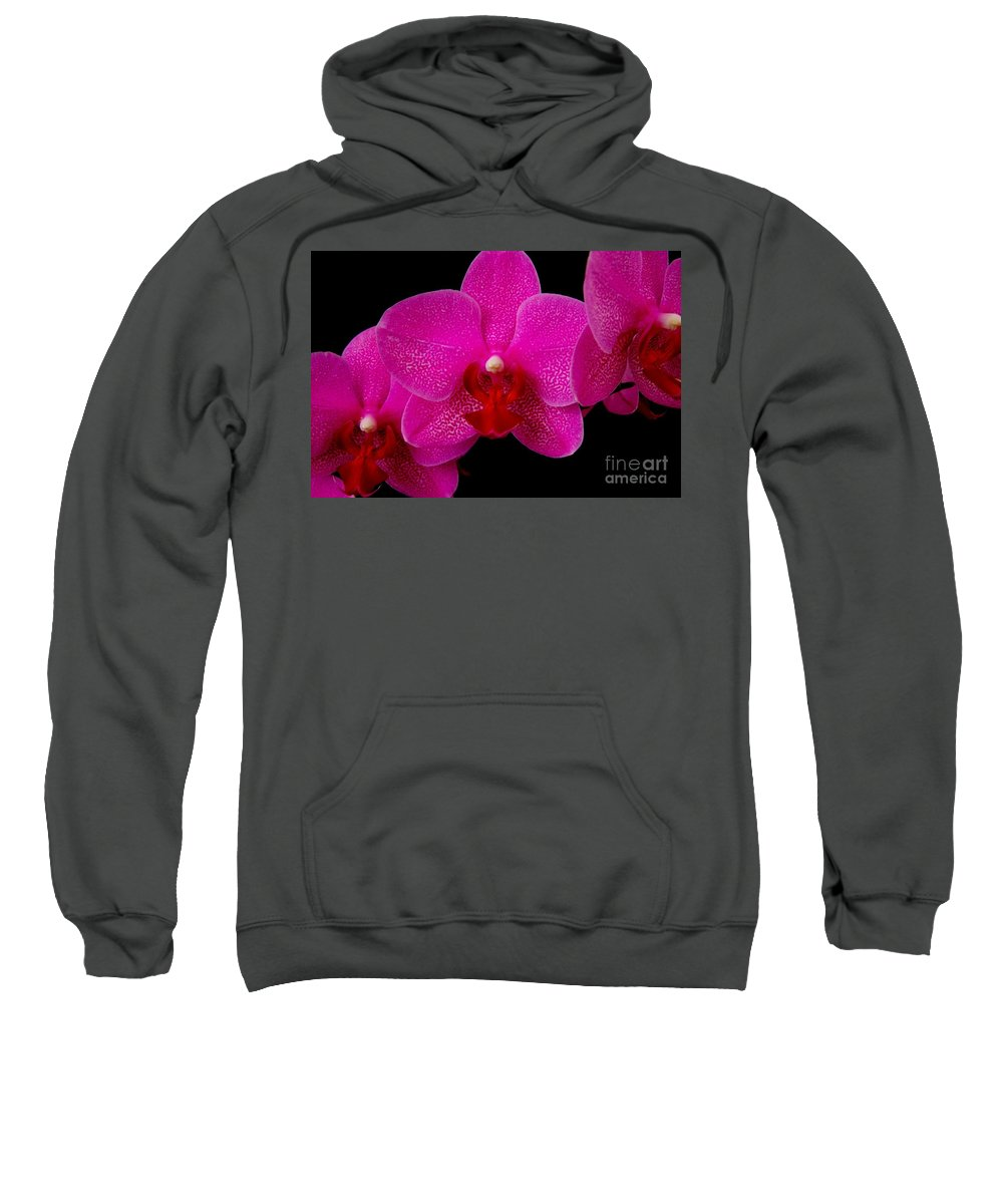 Pink Sweatshirt featuring the photograph Mottled Orchid 8 by Mary Deal