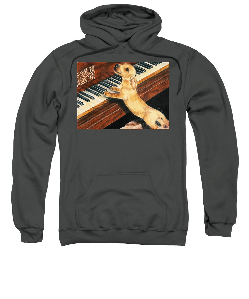 Purebred Dog Sweatshirt featuring the drawing Mozart's Apprentice by Barbara Keith