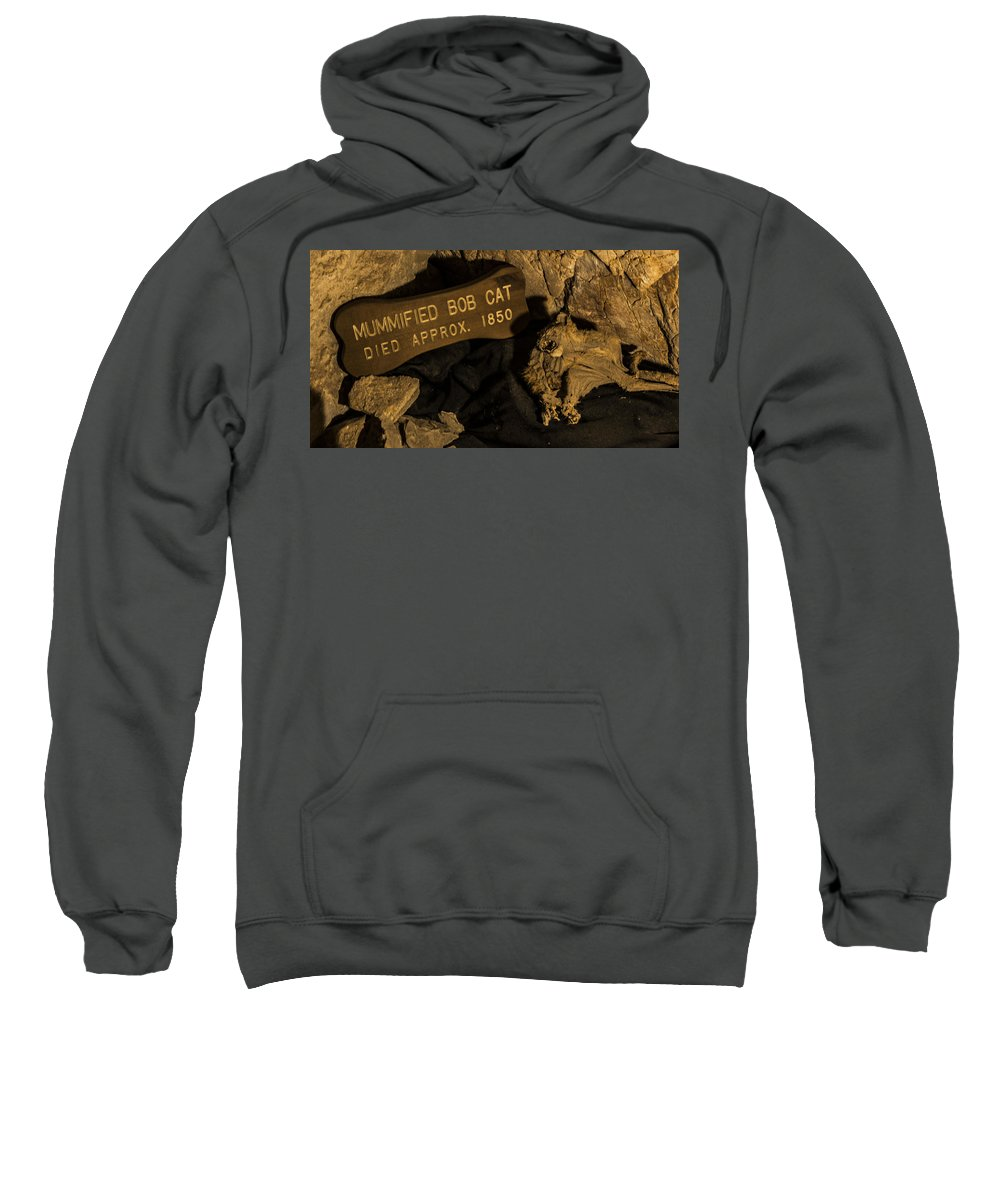 Grand Caverns Sweatshirt featuring the photograph Mummified Bobcat by Angus Hooper Iii