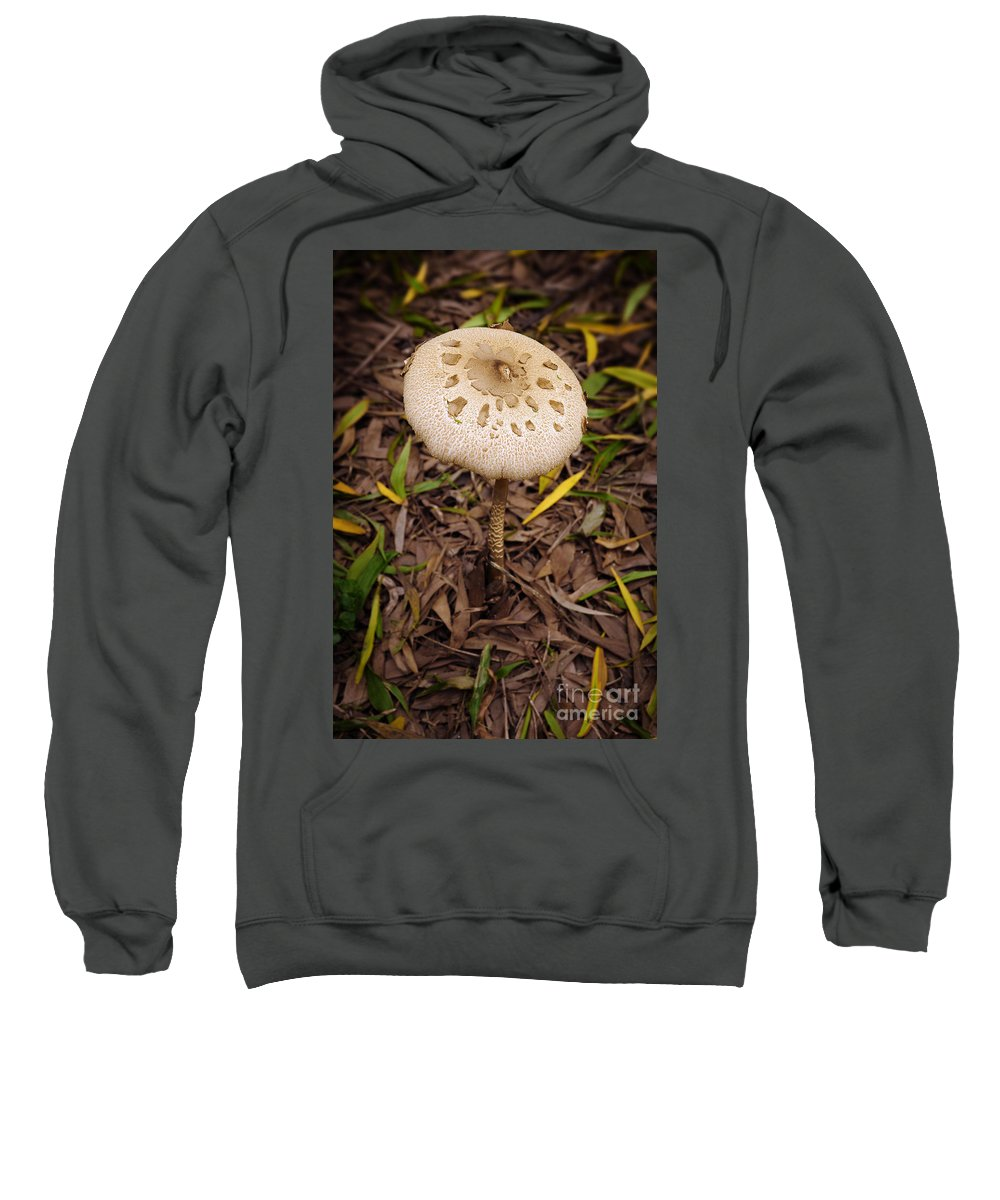 Autumn Sweatshirt featuring the photograph Mushroom by Carlos Caetano
